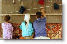 Kashmir Rugs Price Kashmir Carpet