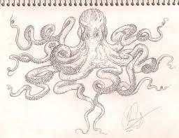 octopus chest tattoo flash sketch by bass slinger on deviantart