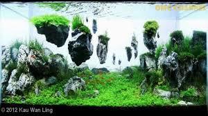 japanese aquascape top 300 best aquascape aquariums youtube