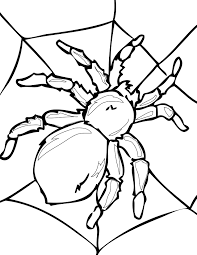 spider coloring in pages spider coloring