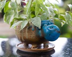 animal planter ceramic animal planter hippo kopai paar indian craft store