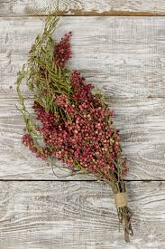 pink pepperberry branches wedding florist supplies and weddings