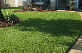 Cutting Edge Lawn And Landscaping by The Cutting Edge Lawn And Landscape Services Jacksonville Fl