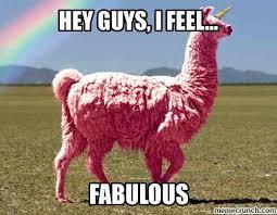 Llama Meme - my phone autocorrected llammame call me in spanish to llama meme