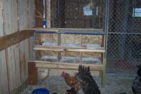 Chicken Coop Floor Options by Nest Boxes How High Off The Floor Backyard Chickens