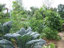 Vegetable Garden Restaurant by Helping Gardeners Grow 2013