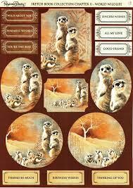 foil play pollyanna pickering world wildlife sketch book