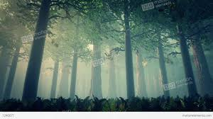 forest render deep forest fairy tale scene 3d render stock animation 1246671