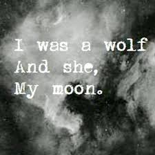 thoughts the wolf and the moon mz vy s