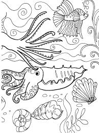 dover publications sea adventure coloring