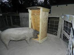 How To Build A Pig Barn 17 Best Images About Pig Raising On Pinterest A Chicken