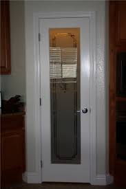 door design with frosted glass home design