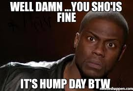 Hump Day Meme - well damn you sho is fine it s hump day btw meme kevin hart