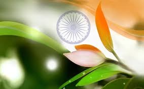 Flag Flower Tri Color Flower Flag Indepence Day Hd Wallpapers