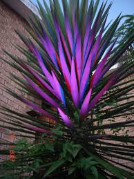 Colored Led Landscape Lighting Change The Color Of Your Landscaping By Installing Led Uplights