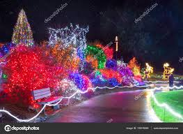 Zoo Lights Pt Defiance by