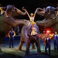 Barnes And Bailey Circus Look Back At Ringling Bros And Barnum U0026 Bailey Circus In Photos