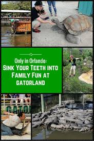 things to do in orlando thanksgiving weekend 166 best images about orlando vacation tips on pinterest disney