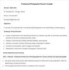 resume template professional designations and areas professional designations on resume standard professional resume