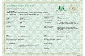 registration certificates for dog owners u2013 the kennel club
