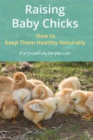 raising baby how to keep them healthy naturally