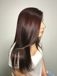 Light Burgundy Hair Más De 25 Ideas Increíbles Sobre Light Burgundy Hair En Pinterest