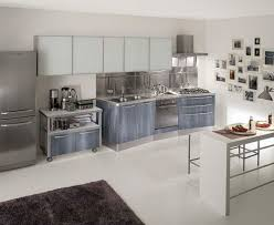 Crosley Steel Kitchen Cabinets by Authenticity Steel Cabinet Shelves Tags Steel Kitchen Cabinets
