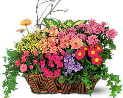 Wedding Flowers Houston Top 10 Florists In Houston Tx Quick Flowers Delivery Service