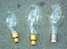 Mercury Vapor Lights Leptraps Com Insect Light Traps Uv And Mv Bulbs
