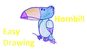 how to draw cartoon hornbill easy drawing for kids youtube