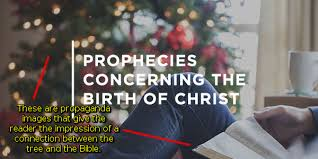 The Christmas Tree In The Bible - christmas the rejection of jesus