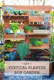 Diy Herb Garden Box by 71 Best Succulents Images On Pinterest Gardening Succulents