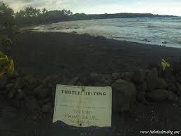 black sand beach big island the famous black sand beach on the big island of hawaii