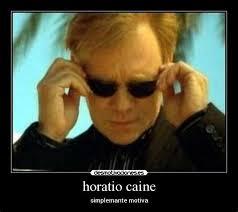 Horatio Caine Meme Generator - th id oip 9fnx1jsmcyguiqny3jdnlahagn