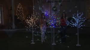 kringle express indoor outdoor 6 u0027 plug in led starlight birch tree