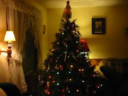 Christmas Tree House | our christmas tree the shepherds house