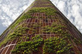 tower as trellis a plant covered high rise reimagines tropical