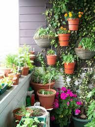 krã uter balkon chestha küche kräuter idee