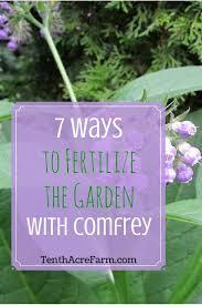 7 ways to fertilize the garden with comfrey tenth acre farm
