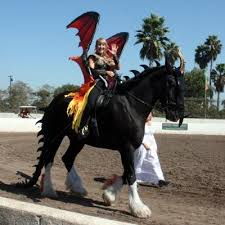 Halloween Costume Dragon Equinely Spooky 25 Horse Halloween Costumes