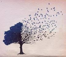 butterfly tree with 47 items