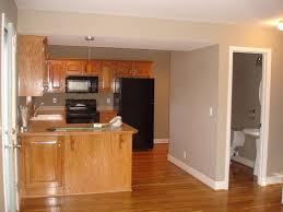 cheap oak cabinets with dark wood floors compact honey oak