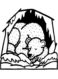 140 best hibernation images on pinterest preschool winter