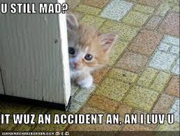 Still Mad Meme - u still mad meme 28 images are you still mad still mad you are