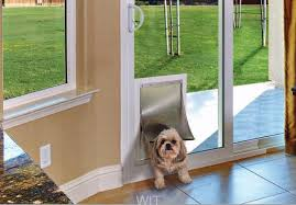pet door in sliding glass in glass pet door doggie door