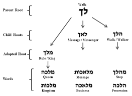 anatomy of hebrew words