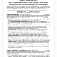 Product Management Resume Samples by Retail Sales Manager Resume Examples 33 Professional Hotel Sales