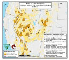 Colorado Mesa University Map by Programs Wild Horse And Burro Herd Management Science And