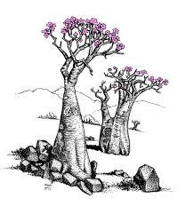 bottle trees sketch u2013 just sketches