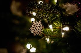 free photo tree lights ornaments free image on